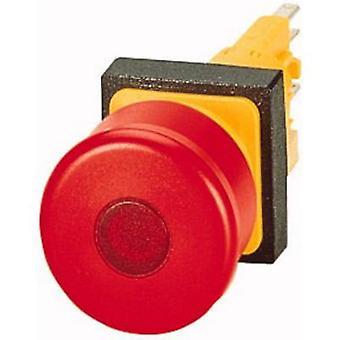 Eaton Q25LPV Kill switch 24 V DC IP65 1 st