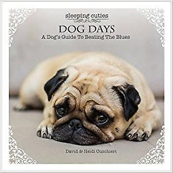 Dog Days: A dog ' 's Guide to Beating the Blues 9781922161598