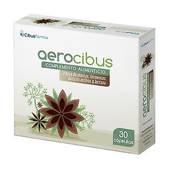 Aerocibus 30 capsules