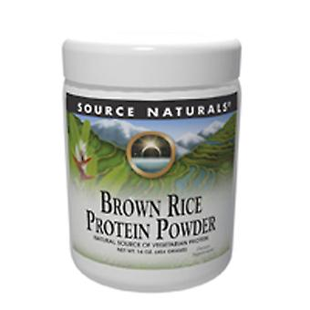 Fonte Naturals Brown Rice Protein Powder, 907 Gram, 2LB (907gm)