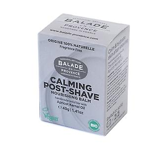 Solid Balm After Shave 40 g