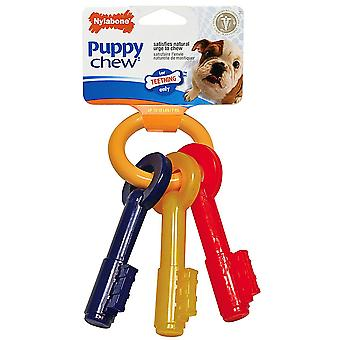 Interpet Limited Nylabone Puppy Teething Keys