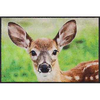 Salon Leeuw mat 50 x 75 cm vuil mat nieuwsgierige Fawn Fawn