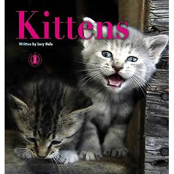 Kittens by Lucy Hale - 9781776500116 Book