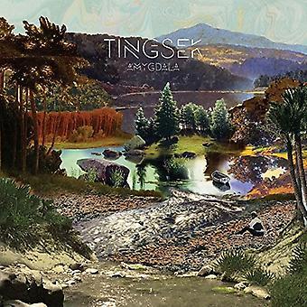 Tingsek - Amygdala [CD] USA import