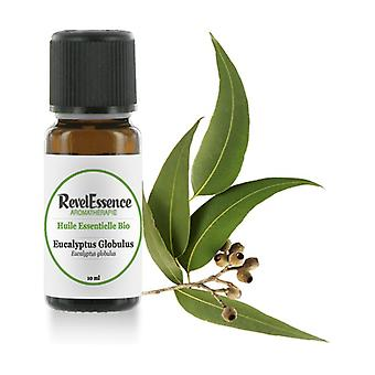 Eucalyptus Globulus Organic essential oil 10 ml