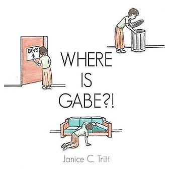 Where Is Gabe?! by Janice C Tritt - 9781545605356 Book