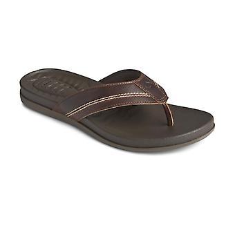 Sperry Plushwave Flip Flop Mens Leather Sandals Brown