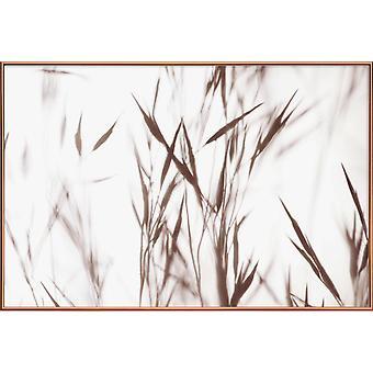 JUNIQE Print -  Elegant Grass - Blätter & Pflanzen Poster in Cremeweiß
