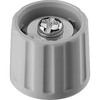 Ritel 26 21 60 1 Control knob Grey (Ø x H) 21 mm x 17.5 mm 1 pc(s)
