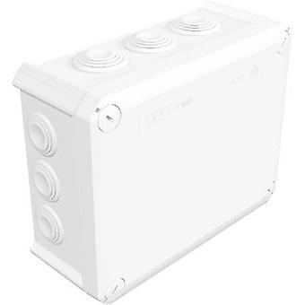 OBO Bettermann 2007541 Junction box (L x W x H) 190 x 150 x 77 mm Pure white (RAL 9010) IP66 1 pc(s)
