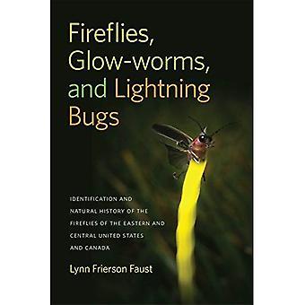Luciérnagas, luciérnagas y Lightning Bugs: identificación e Historia Natural de las luciérnagas de la oriental...