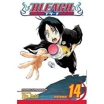 Bleach: v. 14