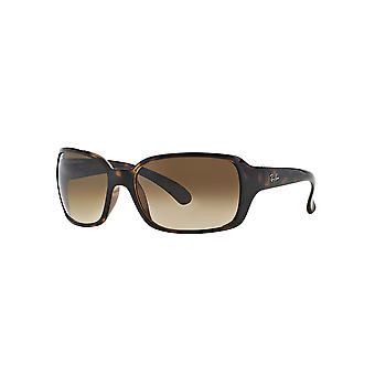Ray-Ban RB4068 710/51 Havana/Crystal Brown Gradient Sunglasses