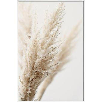 JUNIQE Print - Pampas Reed 03 - Leaves & Plants Poster in Cream White & White
