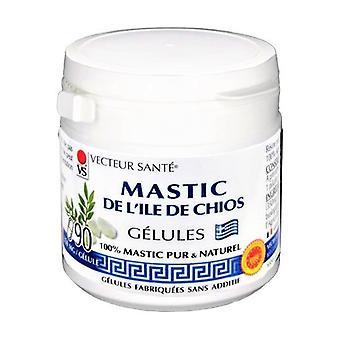 MASTIC de l'ile de Chios gélules 100% Mastic 90 capsules