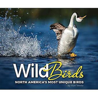 Dzikie ptaki: North America's najbardziej unikalnych ptaków (uznanie przyrody)