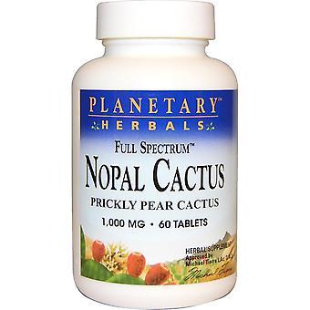 Planetary Herbals, Nopal Cactus, Full Spectrum, Prickly Pear Cactus, 1,000 mg, 6