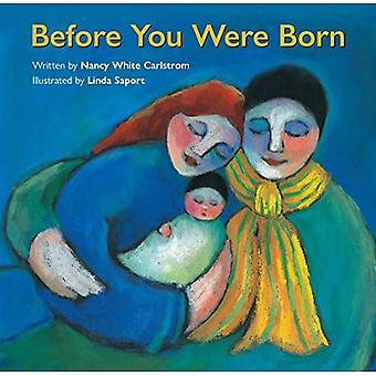 Before You Were Born [Board book]