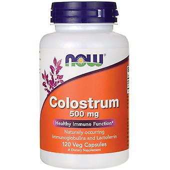 Now Foods Colostrum 500 mg 120 Capsules
