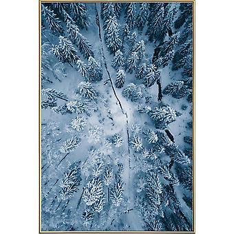 JUNIQE Print - En familj av tallar @hanneskutza - Skogsaffisch i blått och vitt