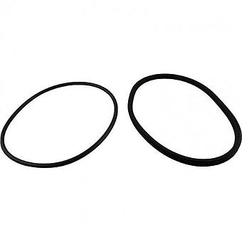 Jandy Zodiac R0446200 Deckeldichtung und Deckel o-Ring