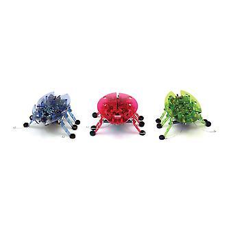 Hexbug kever assortiment - 1 kleur willekeurig geleverd