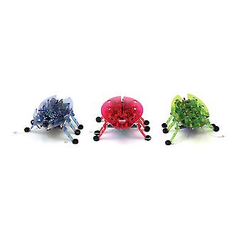 Hexbug Beetle Assortment - 1 Colour Supplied Randomly