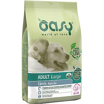 Oasy Adult Large Lamb (Dogs , Dog Food , Dry Food)