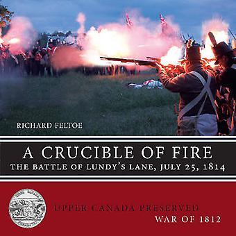 A Crucible of Fire The Battle of Lundys Lane July 25 1814 by Feltoe & Richard