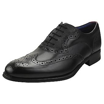 Ted Baker Mittal Mens Brogue Shoes in Black