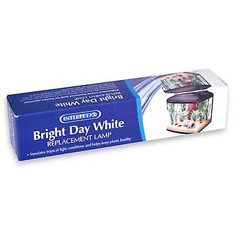 Interpet Bright Day Blanco 15 Watt Aquarium Lámpara de Reemplazo