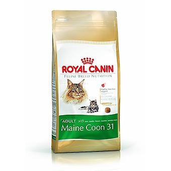 Royal Canin Feline Cat Food Maine Coon 31 4Kg mieszanki suche