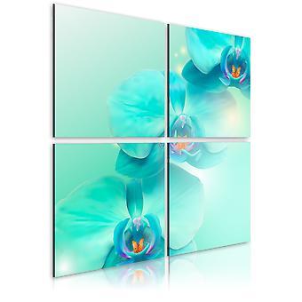 Wandbild - Azurblaue Orchideen