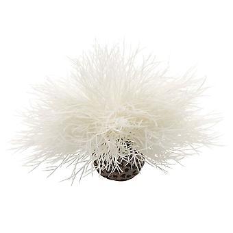 BiOrb Sea Lily - White