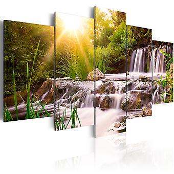 Wandbild - Forest Waterfall