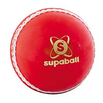 Leser Supaball Training Coaching Cricket Ball Rot