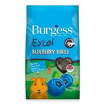 Burgess Excel Blueberry Bakes Small Animal Treats (6 Packs)