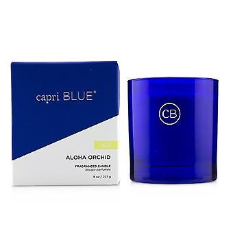 Capri blauwe handtekening kaars-Aloha Orchid 227g/8oz