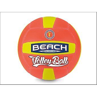 Wilton Bradley Volley Ball B293