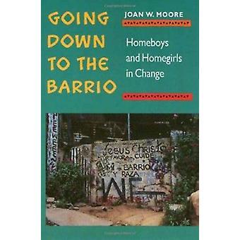 Hinunter zum Barrio - Homeboys und Homegirls im Wandel von Joan W.