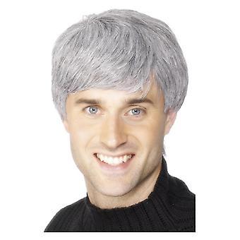 Mens Corporate peruk grå maskeraddräkter tillbehör