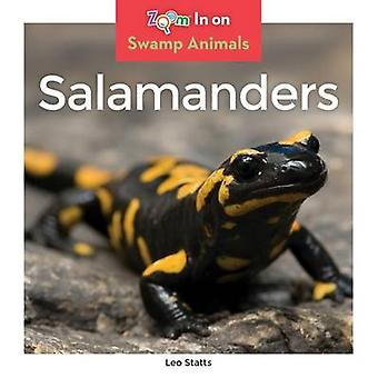 Salamanders by Leo Statts - 9781680792119 Book