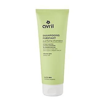 Shampoo Purifying Oily Hair 250 ml