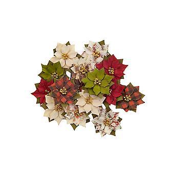 Prima markkinointi joulu maassa kukat talvi ihmemaa