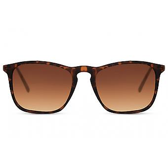 Sunglasses Unisex panto full-edged cat. 3 brown/brown