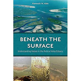 Beneath the Surface: Understanding Nature in the� Mullica Valley Estuary