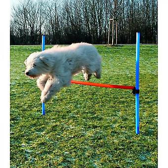 Dog activitate obstacol Agilitate