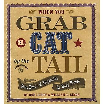 When You Grab a Cat by the Tail - Small Bursts of Inspiration for Busy