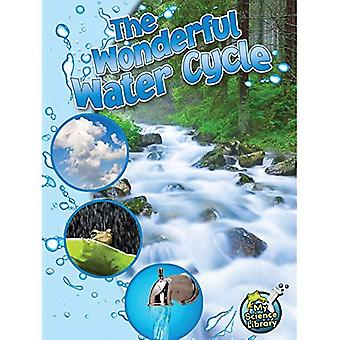 The Wonderful Water Cycle (My Science Library, 4-5)